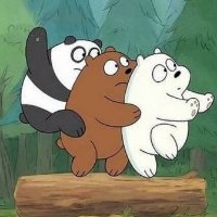 东极岛三熊