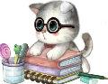 岛猫islandcat