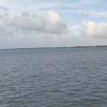 硇洲岛余渔鱼