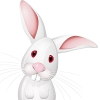 兔牙女神经静