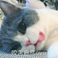 折奈ING