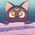 是你的小橘猫